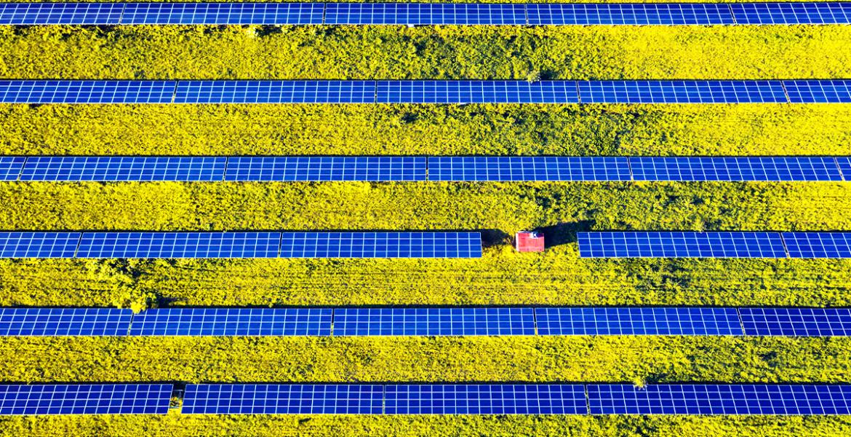 Em 2019 a energia renovável 34% da energia utilizada na União Europeia era renovável.